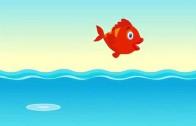 Kırmızı Balık – Şarkı